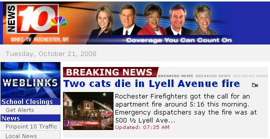 Dois gatos morrem num incêndio | Two cats die in fire